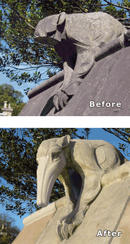 photos_of_anteater_before_and_after_restoration