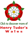 Tudor Rose logo with link to more information page