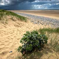photo_of_gronant_dunes
